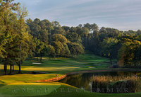 Country Club of Birmingham, AL, West Course, 14, Pete Dye, architect.