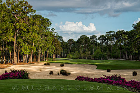 Naples National Golf Club, Number 14, Naples, Florida. Hurdzan/Fry, architects.